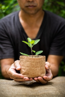 成長している植物の袋ポットを持っている男の手