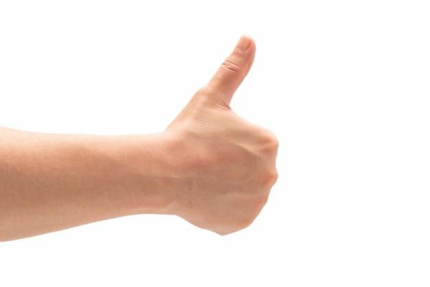 ホワイトスペースに分離された人間の手。