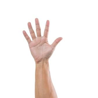 白い表面に分離された5つの図を持つ男の手