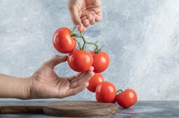 ジューシーなトマトの束を持っている男の手。