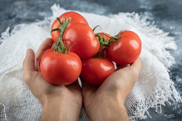 カラフルなトマトの束を持っている男の手。