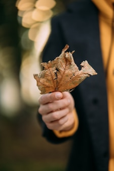 Man holding autumn leave in the park
