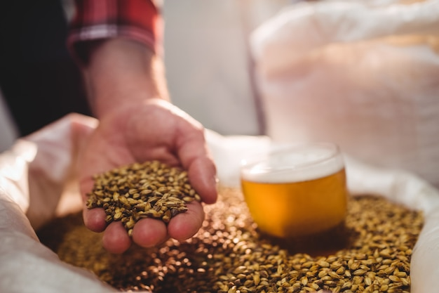 Man holding barley by beer glass in sack at brewery