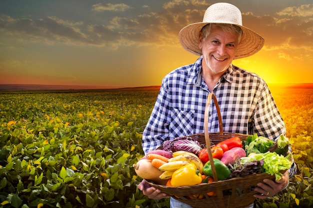 Man holding basket with healthy organic vegetables. plantation background.