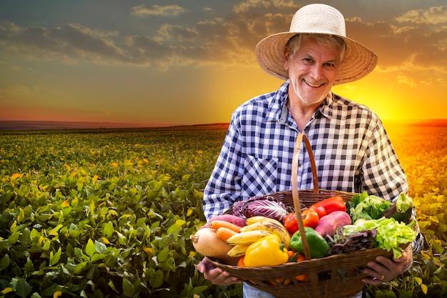 Мужчина держит корзину со здоровыми органическими овощами. фон плантации.