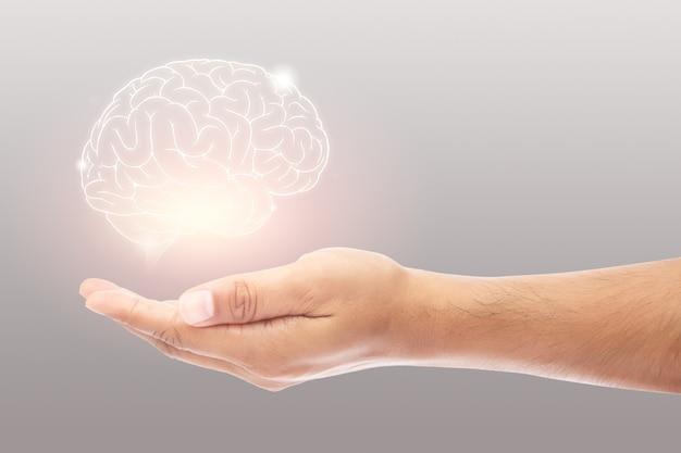 Человек, держащий иллюстрацию мозга против серой стены