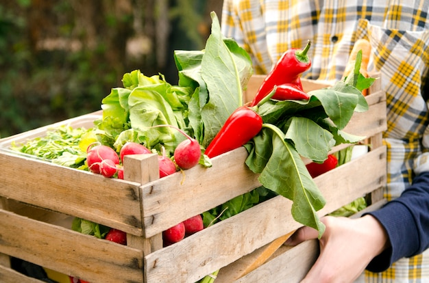 Man holding a crate of fresh vegetables and give it to woman hands.