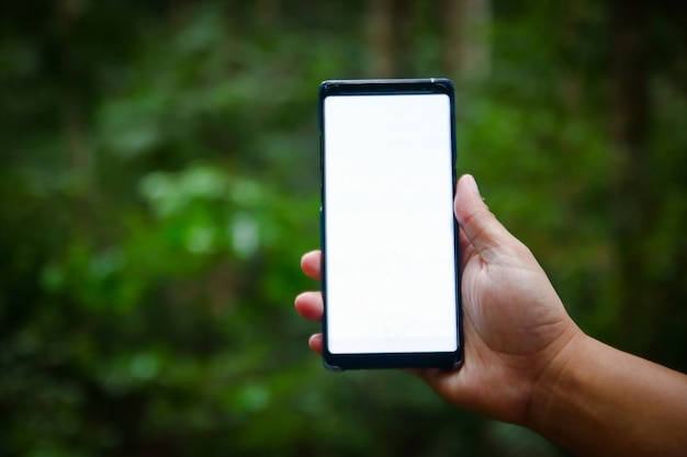 The man holding the phone with blank screen in the forest