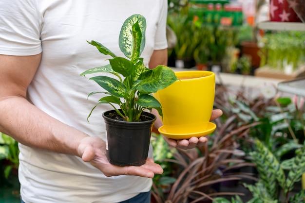 Мужчина держит растение и горшок