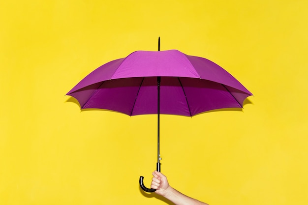 A man holds in his hand a purple umbrella