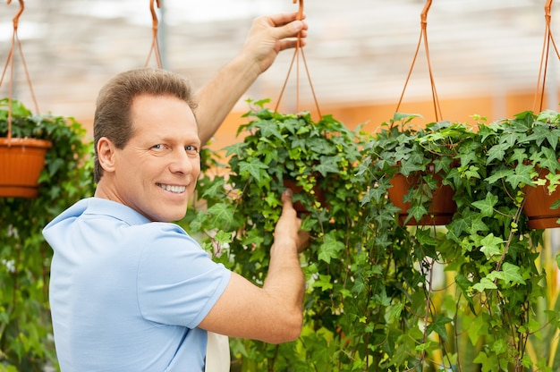 温室の男。植物を保持し、温室に立っている間カメラを見ているエプロンのハンサムな成熟した男の背面図