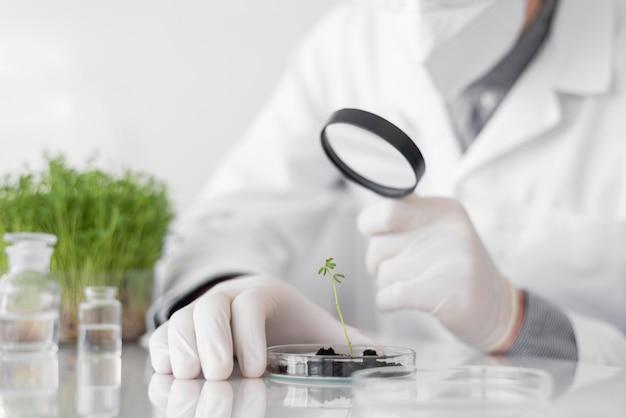Человек в лаборатории делает эксперименты крупным планом на ростке