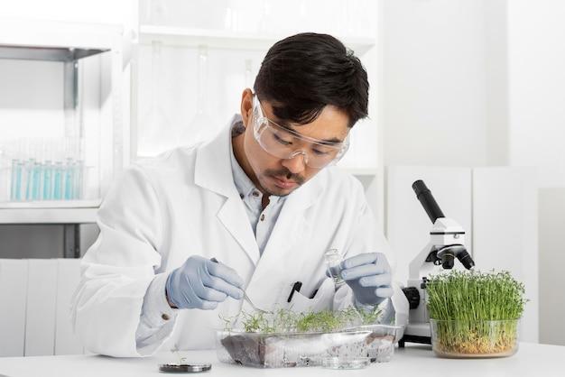 Человек в лаборатории делает эксперименты над ростком