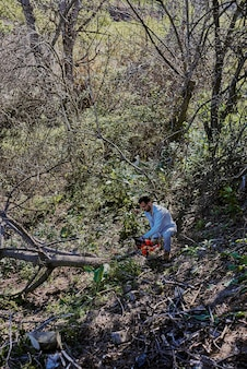 A man is cutting down trees in the middle of the forest.