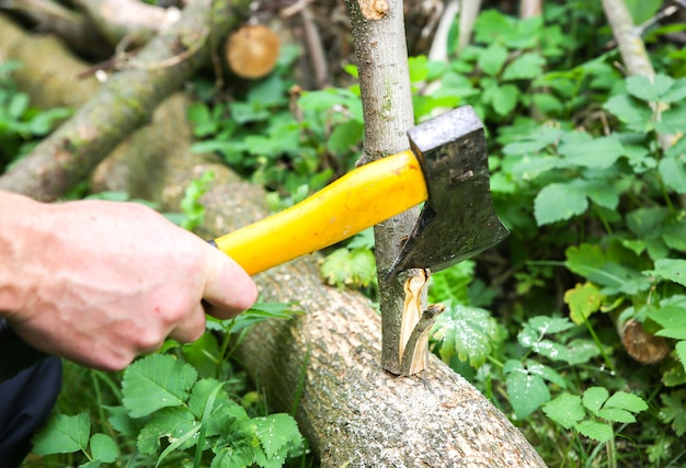 Man is cutting logs outdoors. works with wood in the village.
