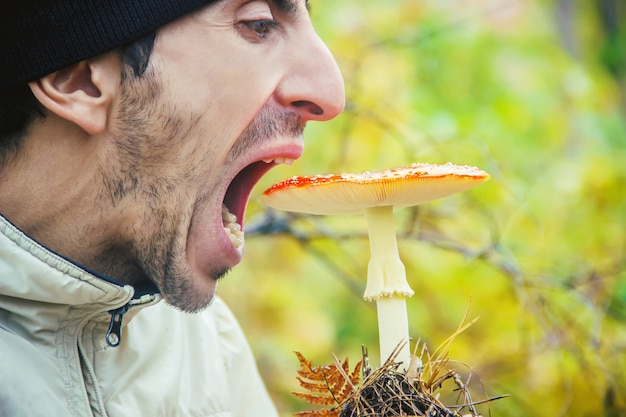 Man is eating amanita. selective focus. nature.