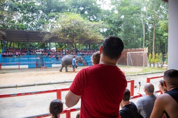 男は幼児を腕に抱き、象の演技を見ています。背面図。