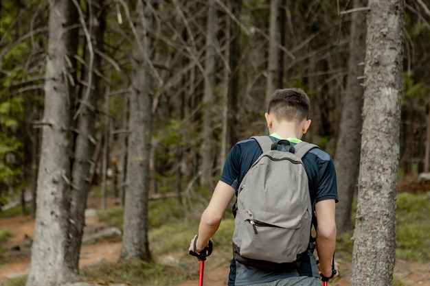 A man is a tourist in a pine forest with a backpack. a hiking trip through the forest. pine reserve for tourist walks. a young man in a hike in the summer, rear view.