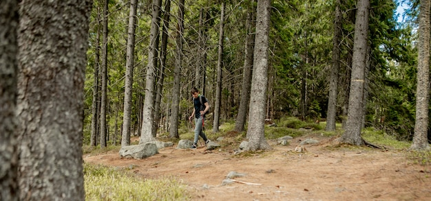 A man is a tourist in a pine forest with a backpack. a hiking trip through the forest. pine reserve for tourist walks. a young man in a hike in the summer.