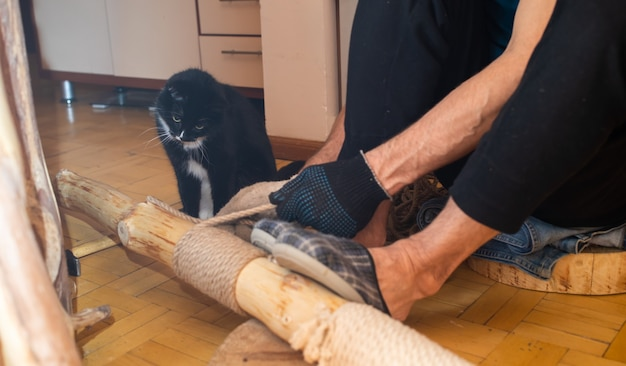 Man making cat tree at home. he winding sezal rope around cleared tree trunk. cat is watching process. homemade cat tree for lovely pet. vertical photo.