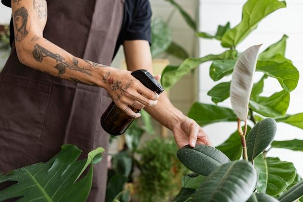 Человек опрыскивает растения струей воды в магазине растений