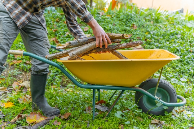 Man moving trunks on his yellow wheelbarrow lumberjack woodcutter with boots and square shirt