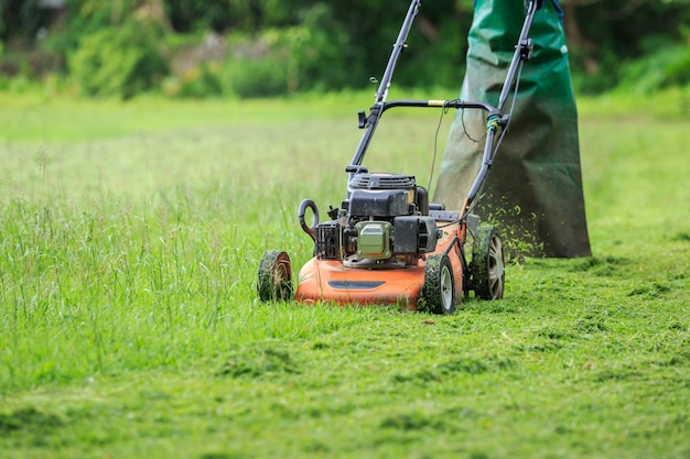 A man mowing grass in the garden
