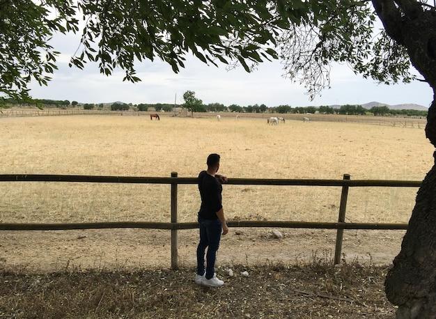 Человек на деревянном заборе из конюшни