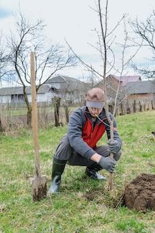 木を植える男。