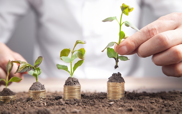Man putting coin into rising stack of coins with plant.