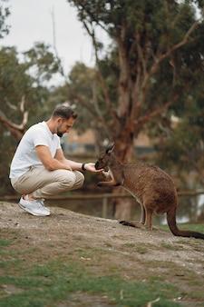 L'uomo nella riserva sta giocando con un canguro