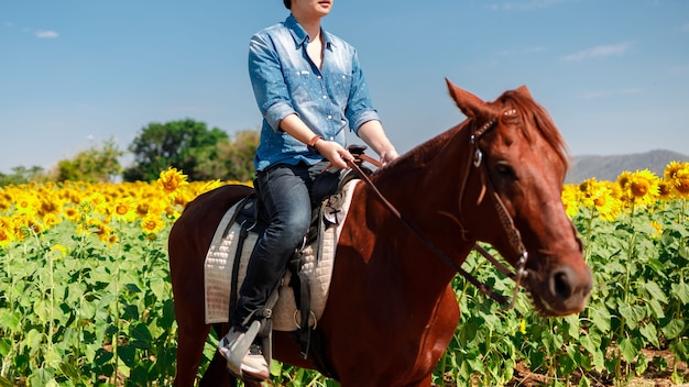 Man ride horse in the sunflowers field on a sky blue background - freedom and hapiness.