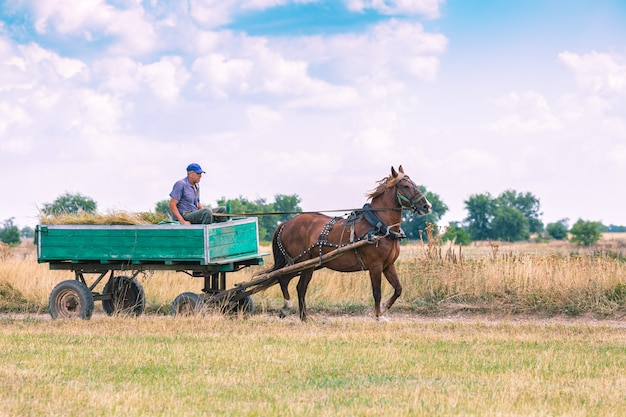A man rides an old cart through the countryside.