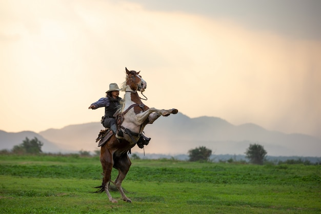 Man riding horse on field during sunset