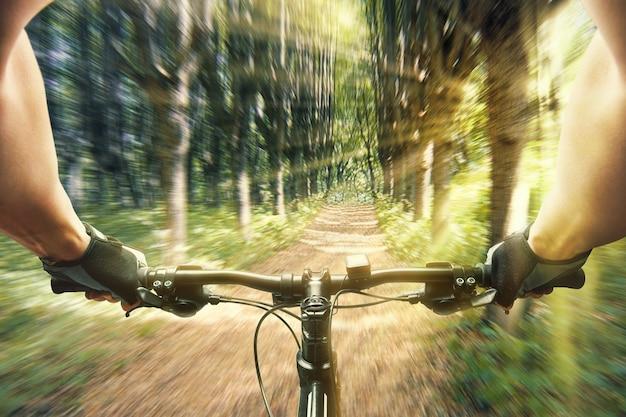Человек, едущий на велосипеде в лесу утром