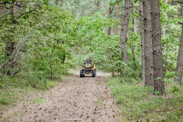 Man riding a yellow quad atv all terrain vehicle on a sandy forest
