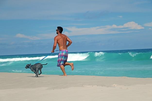 Человек работает на пляже со своей собакой питбуля. солнечный день, голубое небо и кристально чистое море.