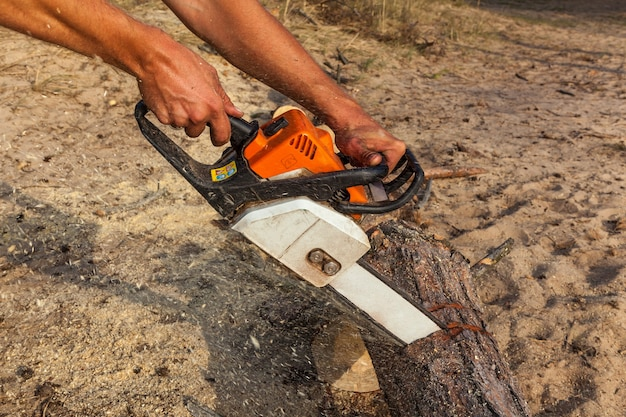 The man saws the log with a black-orange-white chain saw, against the background of sand. a man saws a log with a chainsaw.