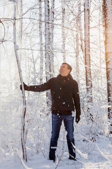 Человек качает дерево, чтобы сделать снегопад в зимнем заснеженном лесу в солнечный день.