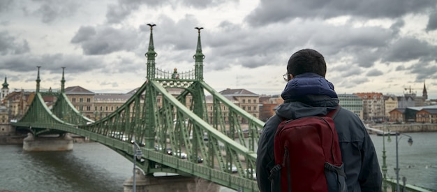 A man sitting high looks at a green bridge in budapest (hungary)