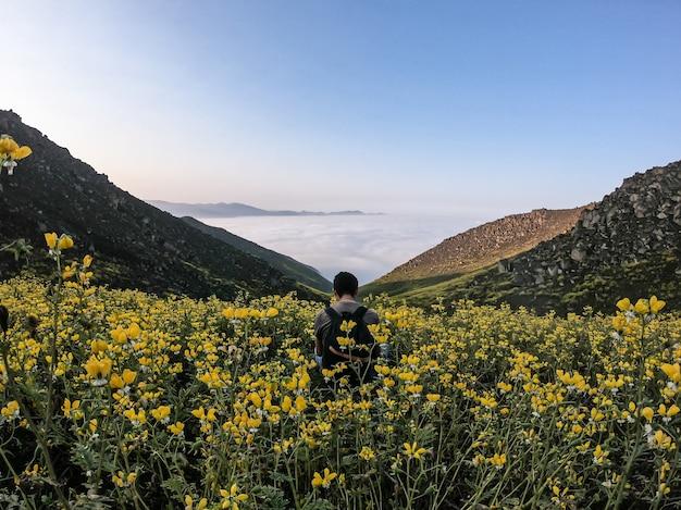 山の谷の花の風景に座っている男