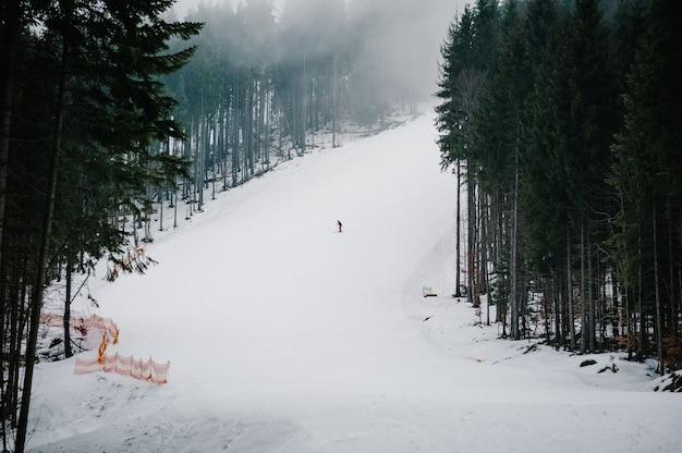카 르 파 티아 산맥의 눈 언덕에서 속도 점프에서 남자 스키 타기 트랙. 배경 숲과 스키 슬로프.