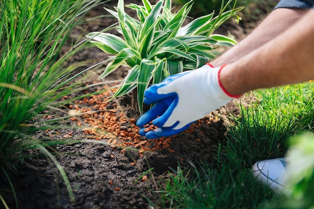 Man in sneakers. man wearing white comfortable sneakers coming to the garden while enriching soil in garden bed