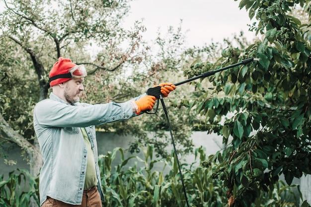 살충제 비누로 영향을 받은 나무에 진딧물을 뿌리는 남자, 과일 재배 농장에 독성 살충제 또는 살충제를 뿌리는 농업 노동자