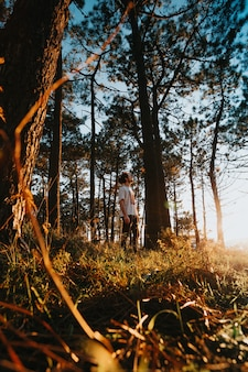 A man standing in the middle of the forest with sun flares breaking through during a sunny day