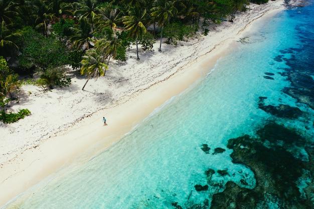 ビーチに立って、景色を眺めながら熱帯の場所を楽しんでいる男。カリブ海の色とヤシの木。旅行とライフスタイルについての概念