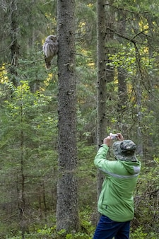 Uomo che cattura maschera del gufo che si siede nella struttura ad albero