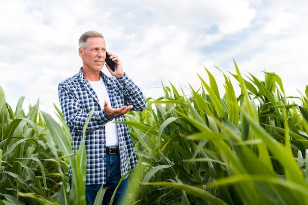 トウモロコシ畑で電話で話している男性
