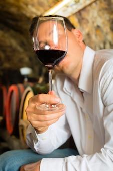 배경 배럴에서 와인을 테스트하는 사람