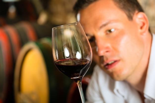 배럴에서 와인을 테스트하는 사람